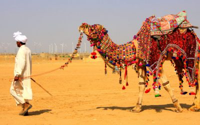EXPLORE BIKANER, RAJASTHAN WITH ME