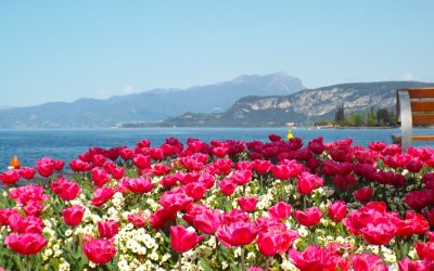 WHY YOU MUST VISIT LAKE GARDA, ITALY