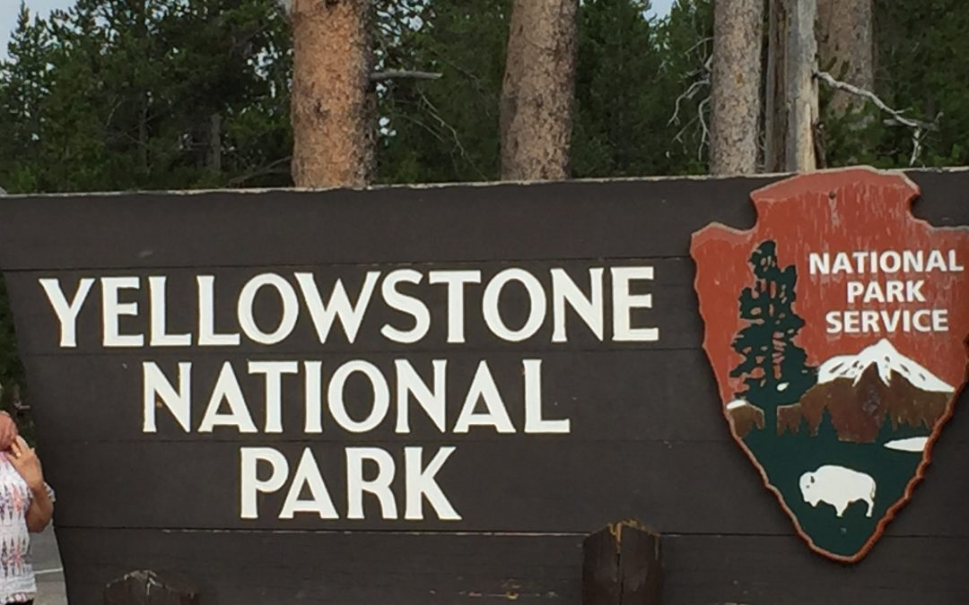Why You Must Visit Yellowstone National Park, Wyoming